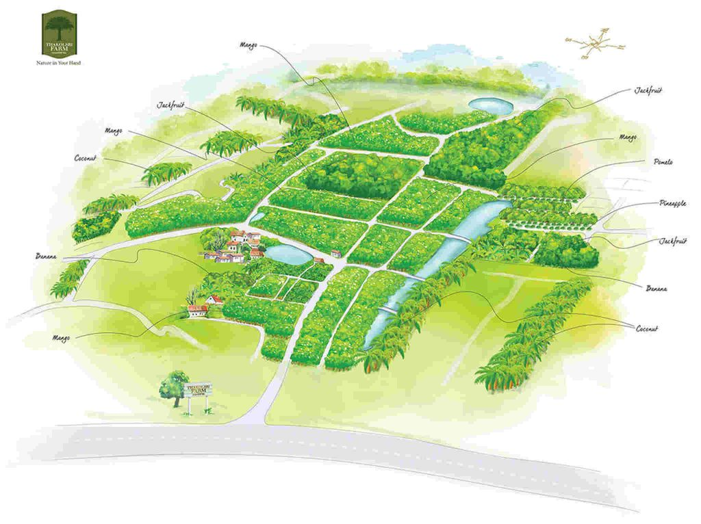 Urban design, Plan