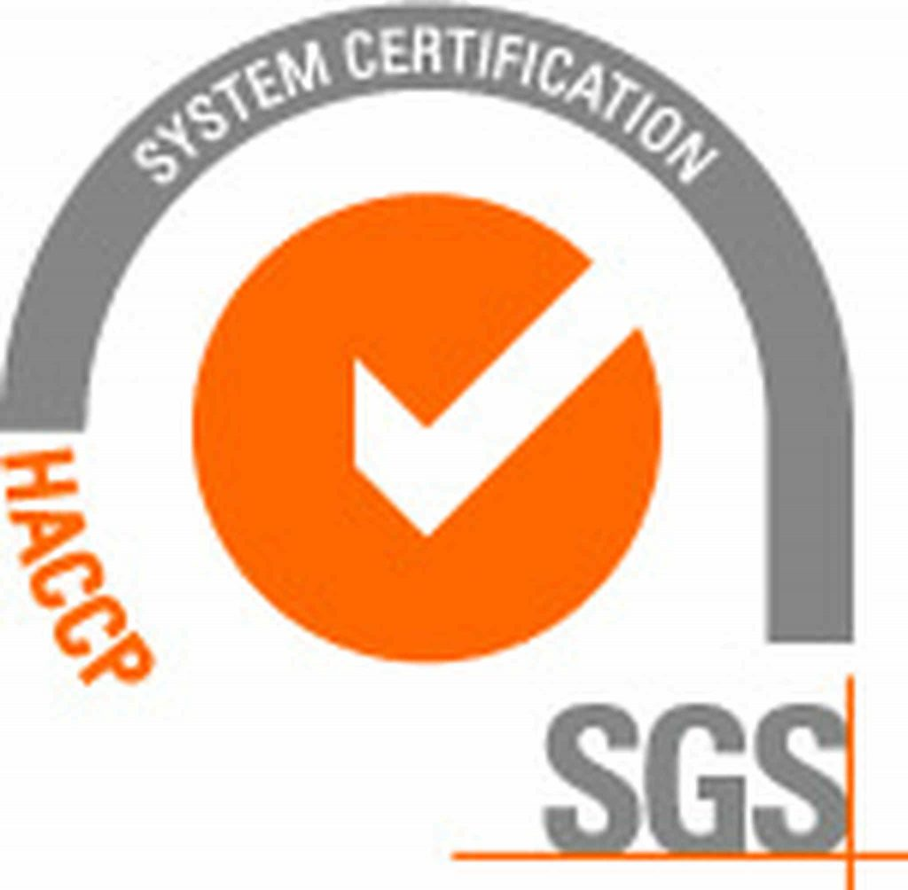 Logo, Orange, Text, Font, Trademark, Brand, Line, Graphics, SGS S.A., ISO 9001, International Organization for Standardization, ISO 9000