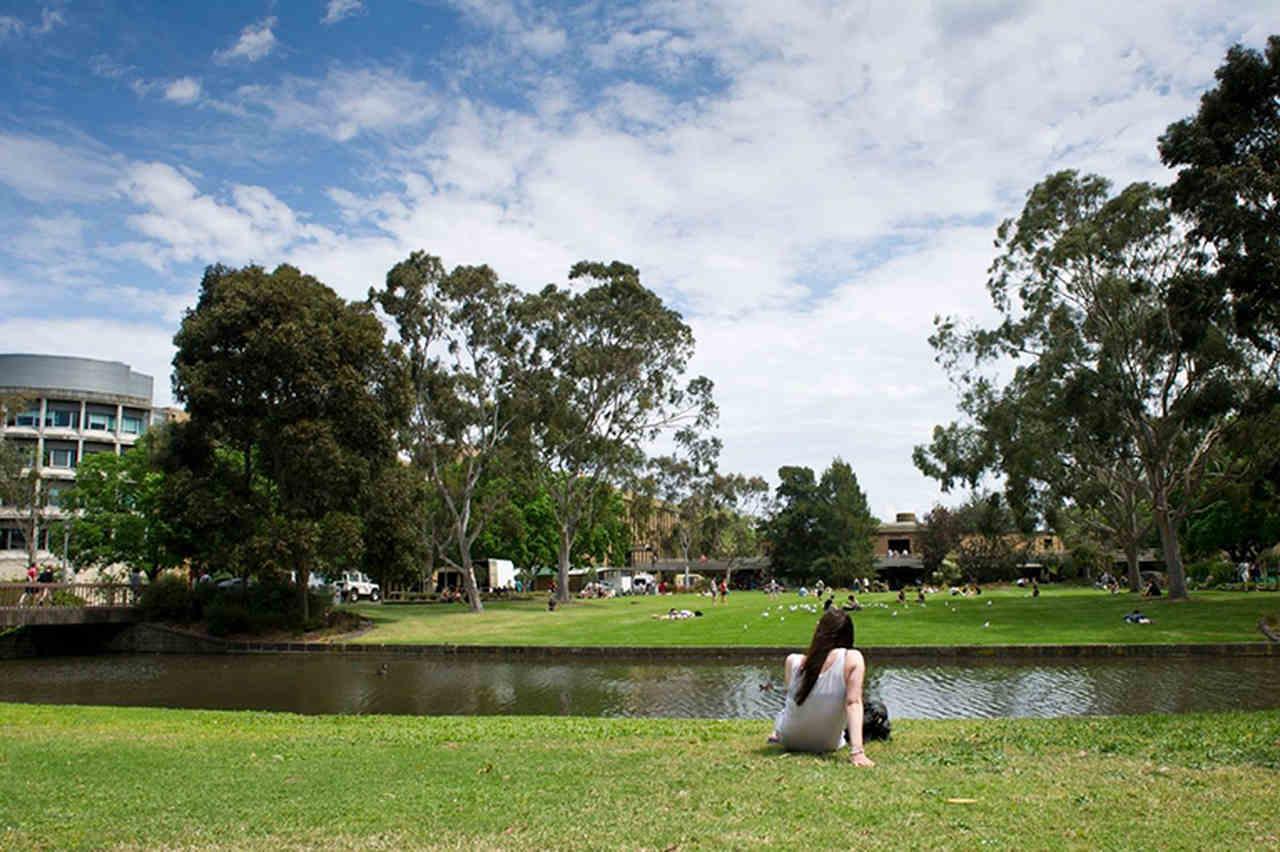Photograph, Green, Sky, Lawn, Grass, Tree, Botany, Estate, Pond, Park, Botanical garden, Cloud, Garden, Architecture, Landscape, Leisure, Lake, Bank