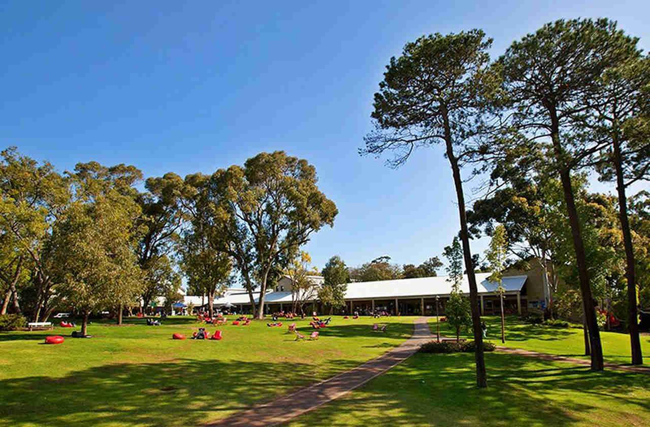Tree, Sky, Daytime, Natural landscape, Grass, Park, Lawn, Woody plant, Spring, Plant, House, Landscape, Recreation, Cloud, Architecture, Estate, Leisure, Lake, Murdoch University