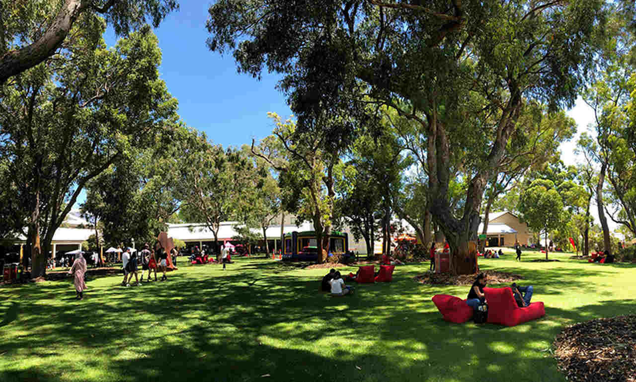 Tree, Grass, Public space, Leisure, Park, Lawn, Recreation, Woody plant, Spring, Plant, Picnic, Tourism, Event, City, Campus, Vacation