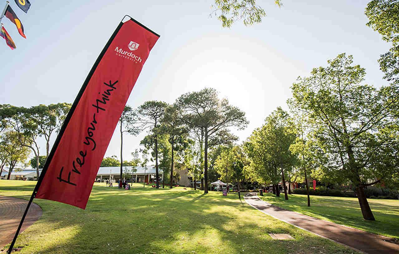 Sky, Green, Red, Natural landscape, Daytime, Tree, Flag, Grass, Banner, Leaf, Architecture, Sport venue, Cloud, Landscape, Plant, Recreation, Advertising, Park, Murdoch University Dubai