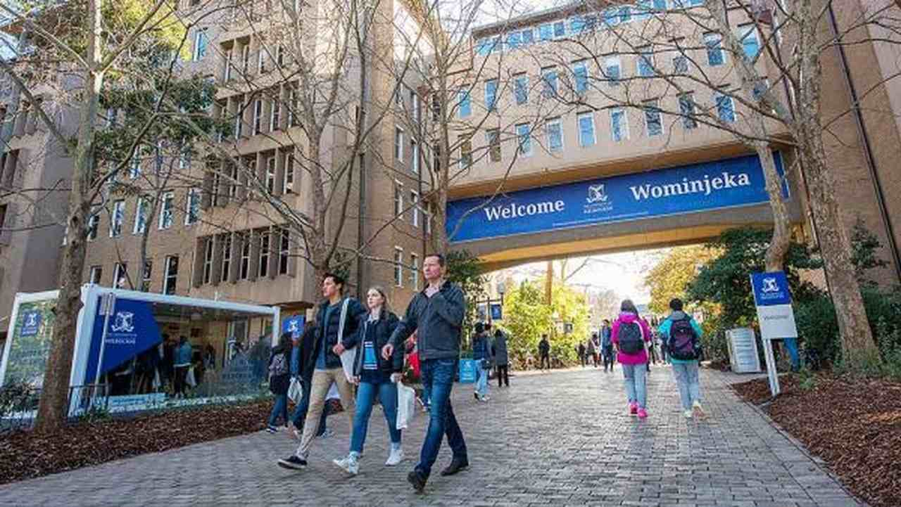 Pedestrian, Building, Architecture, Tree, Walking, City, Leisure, Recreation, University of Melbourne, University, RMIT University, Monash University, Higher Education, Campus, Student