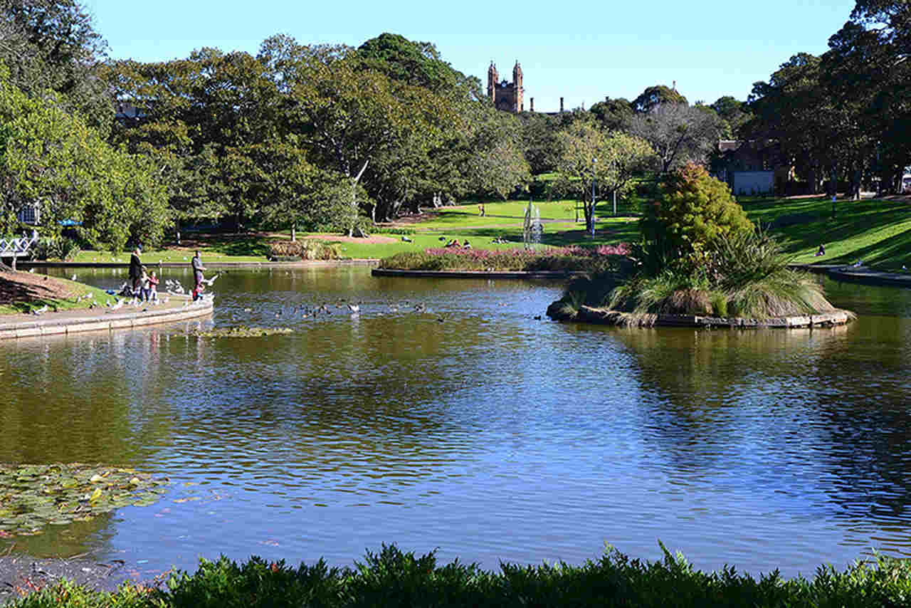 Body of water, Water, Nature, Natural landscape, River, Garden, Water resources, Pond, Tree, Bank, Lake, Reflection, Waterway, Botany, Watercourse, Grass, Botanical garden, Spring, Reservoir, Plant, The University of Sydney, Lake Northam, Victoria Park, Park