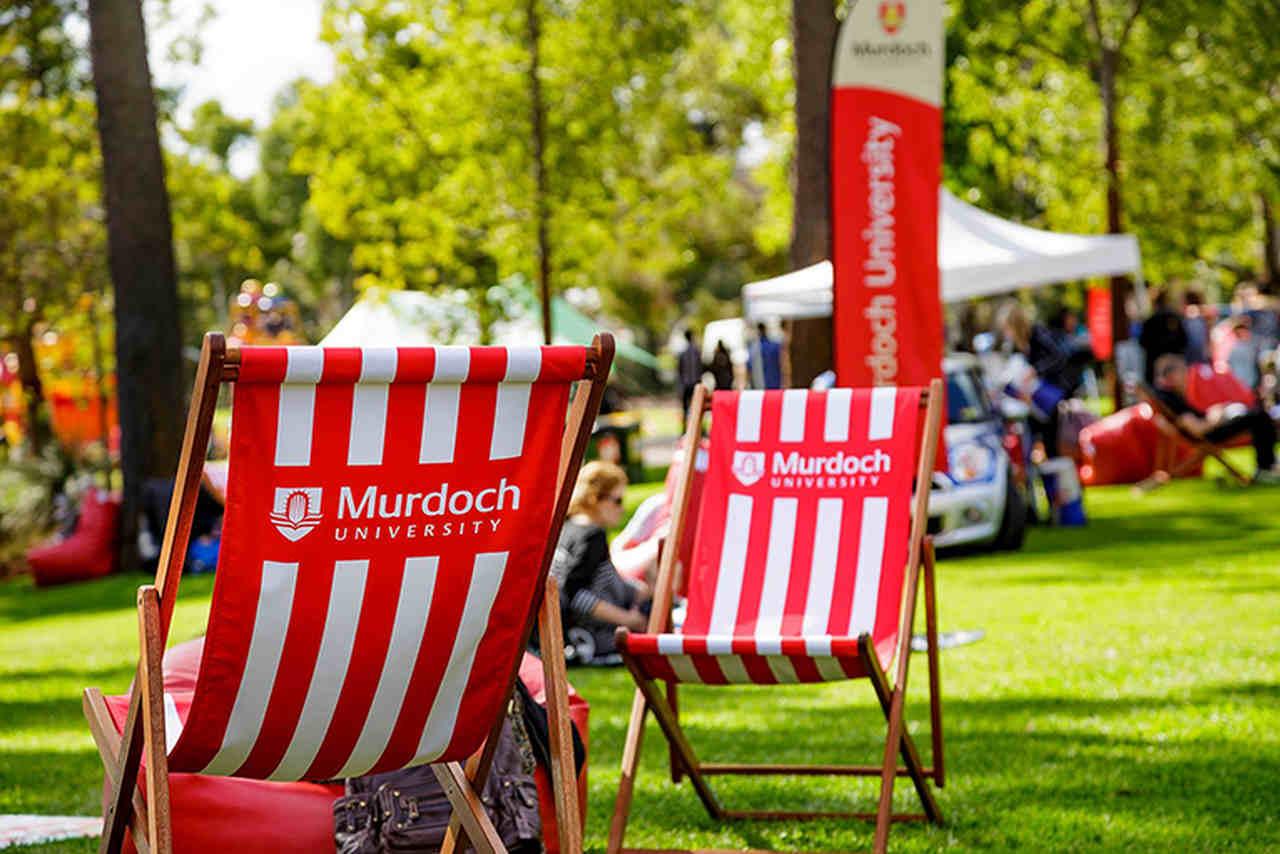 Red, Tree, Grass, Chair, Spring, Summer, Flag, Event, Plant, Murdoch University Dubai, Murdoch University Dubai, Murdoch University, University, University of Calgary, The University of Western Australia