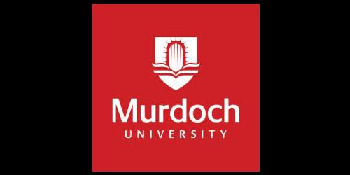 Logo, Text, Font, Brand, Graphics, Murdoch University Dubai, Logo