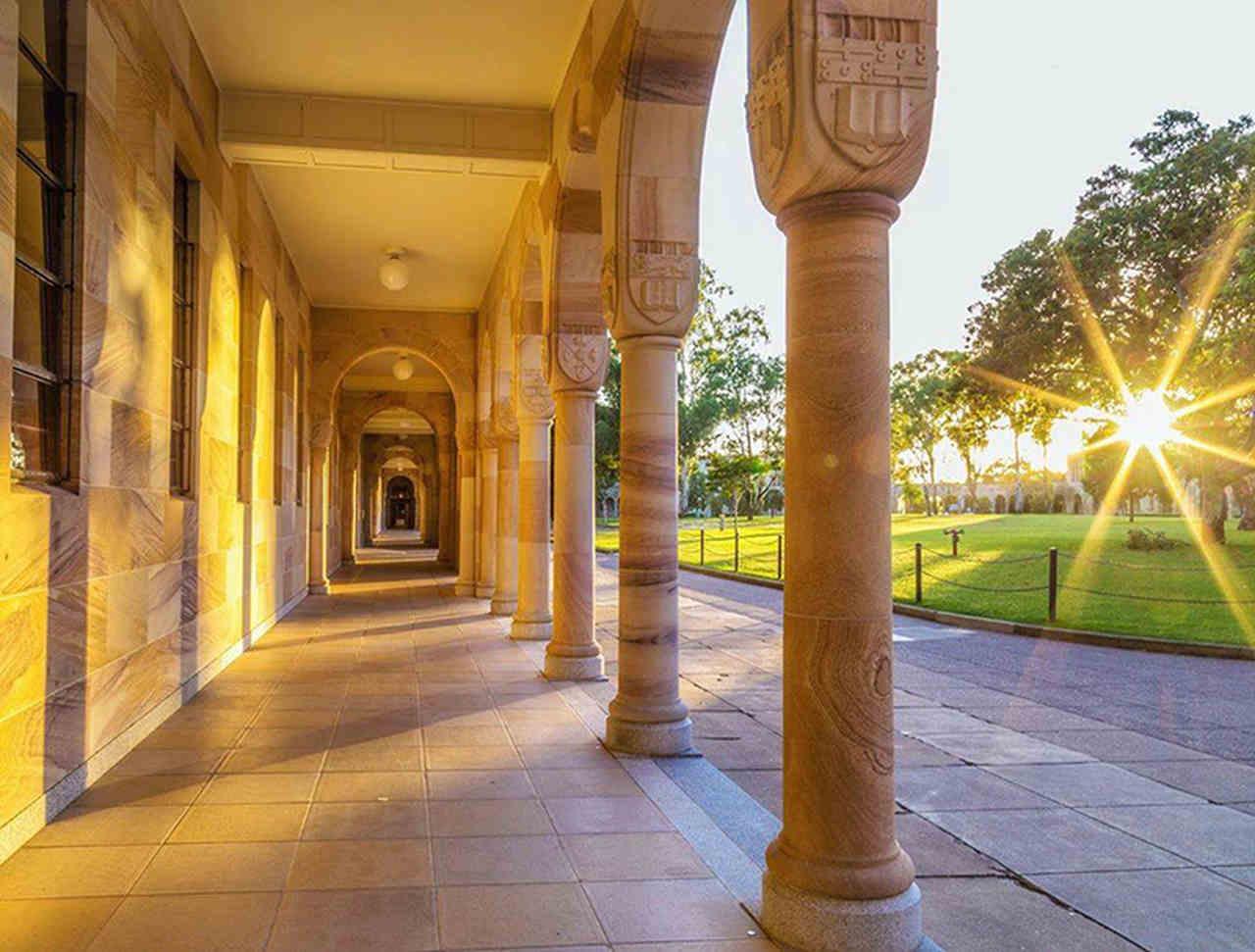 Light, Building, Yellow, Lighting, Architecture, Column, Tree, The University of Queensland