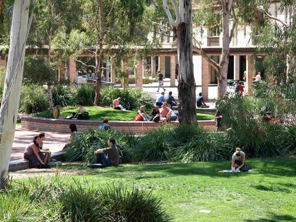 Grass, Property, Garden, Botany, Tree, Leisure, Lawn, Yard, Grass family, Backyard, House, Vacation, Resort, Landscape, Plant, Landscaping, Real estate, Adaptation, Home, Palm tree, University of Canberra, The University of Adelaide, The University of Sydney, University