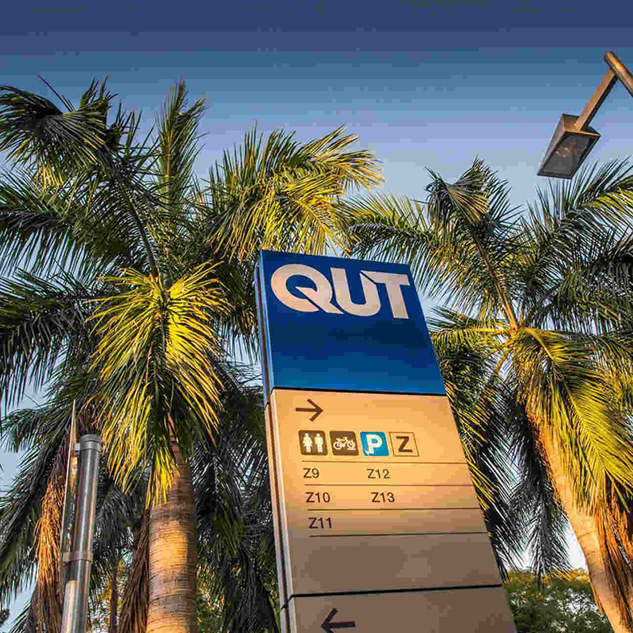 Tree, Palm tree, Sky, Arecales, Woody plant, Signage, Plant, Street sign, Sign, Vacation, Queensland University of Technology, QUT Gardens Point Campus, The University of Queensland