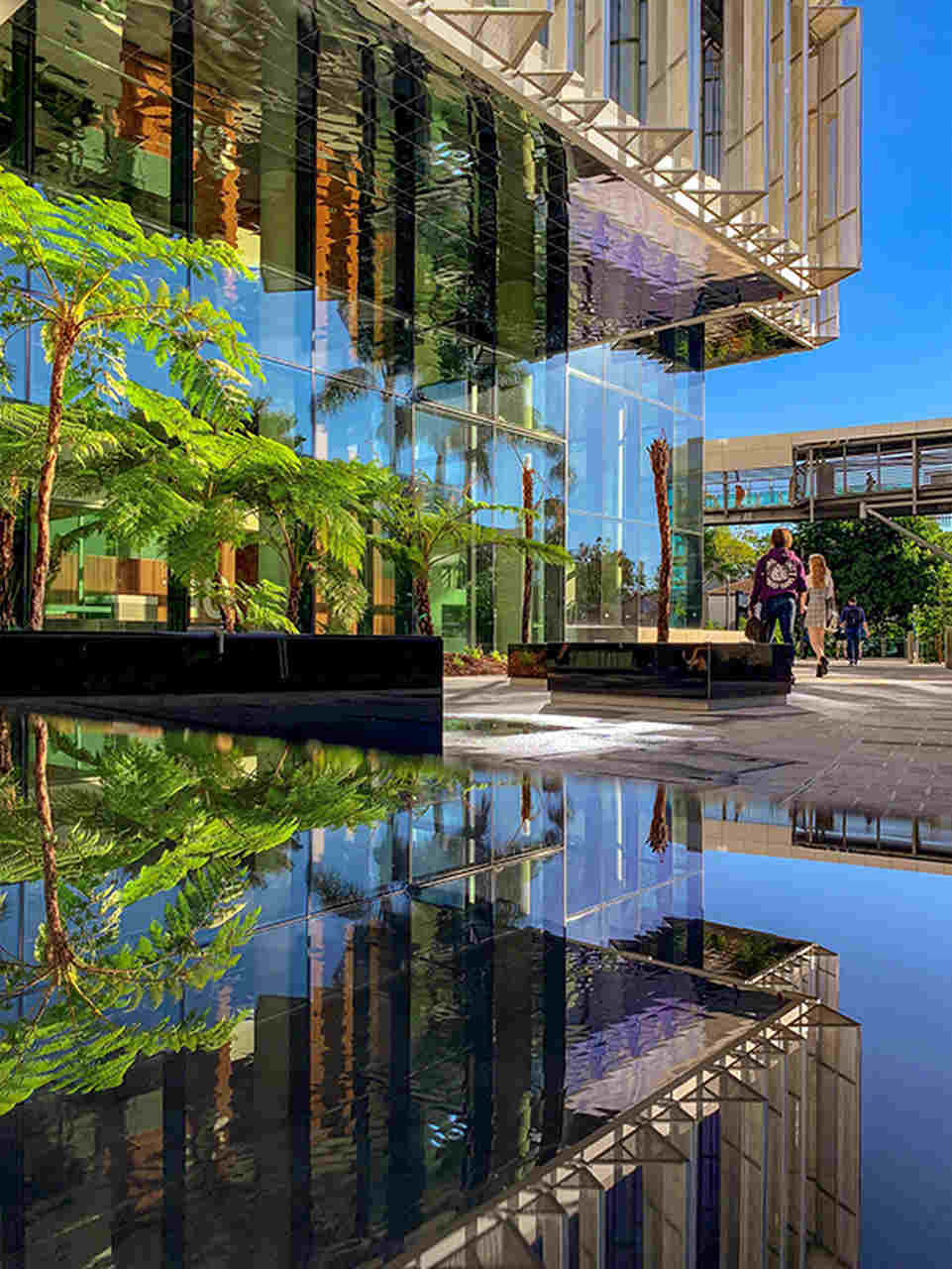 Reflection, Water, Architecture, Vegetation, Building, Landmark, Urban area, Daytime, Waterway, Mixed-use, City, Tree, Metropolitan area, Facade, Condominium, Reflecting pool, Metropolis, Real estate, House, Plant