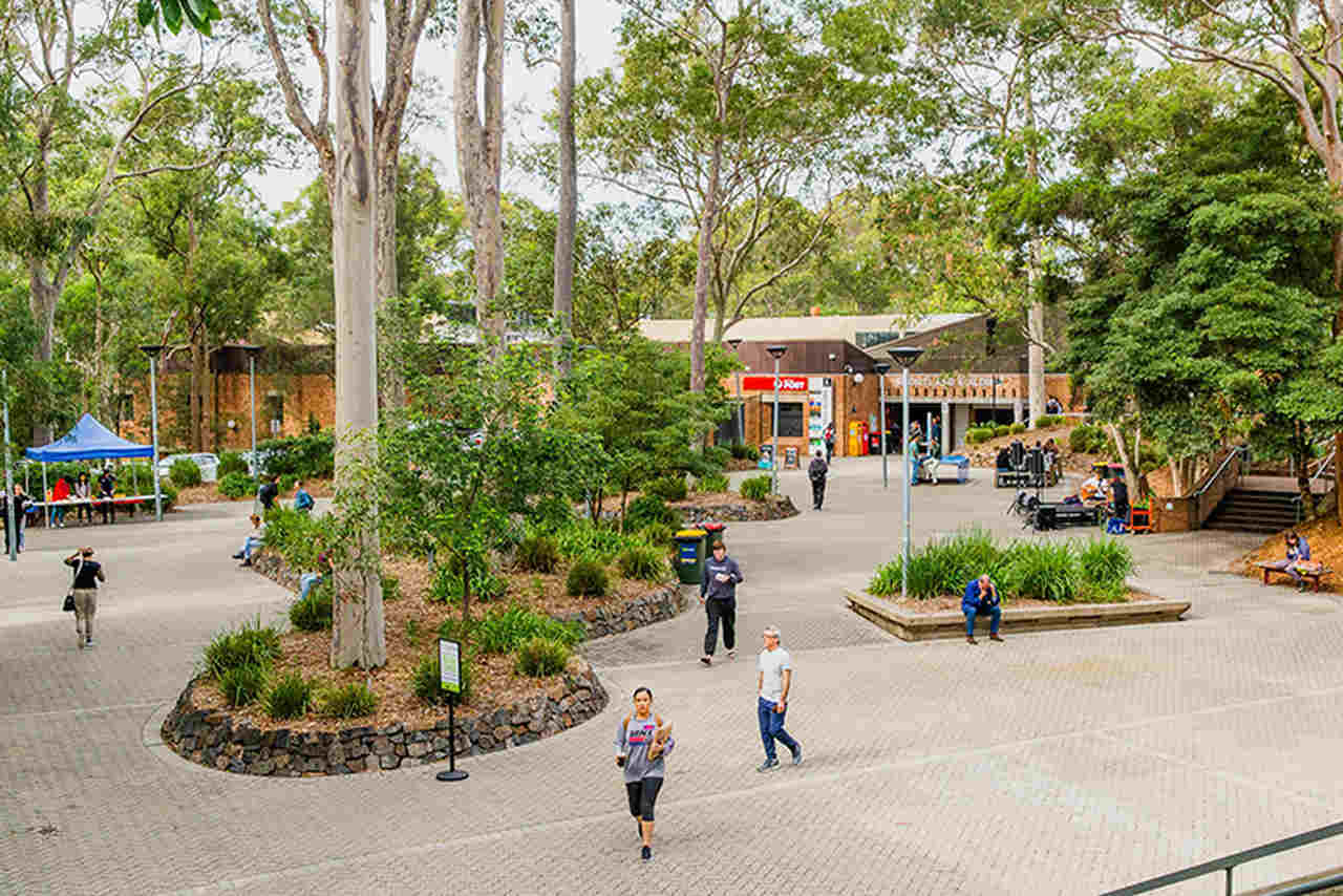 Metropolitan area, Public space, Pedestrian, Town, Tree, Urban area, Human settlement, Street, City, Residential area, Snapshot, Leisure, Architecture, Neighbourhood, Building, Road, Botany, Mixed-use, Spring, Tourism, Ourimbah Campus, University