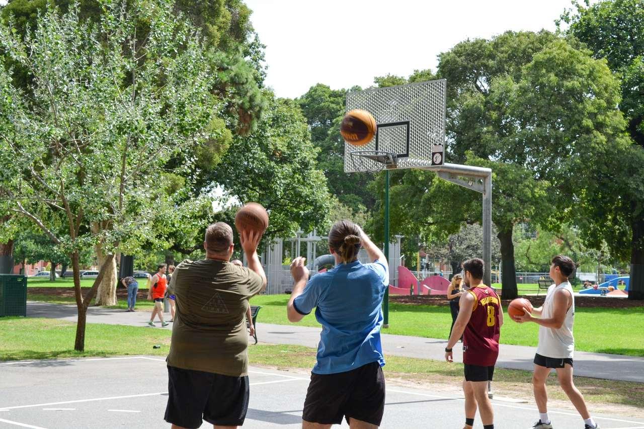 Basketball, Basketball court, Streetball, Team sport, Tree, 3x3 (basketball), Fun, Sports, Ball game, Summer, Sport venue, Leisure, Play, Ball, Netball, Team sport